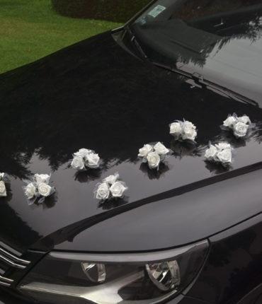 10 Rose ventosa bianche per auto sposi