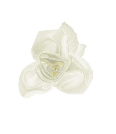10 Rose ventosa crema per auto sposi